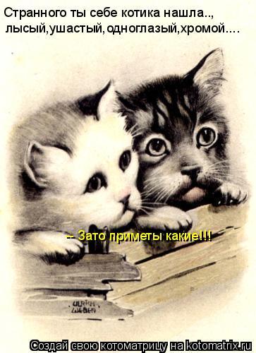 Котоматрица: Странного ты себе котика нашла.., лысый,ушастый,одноглазый,хромой.... -- Зато приметы какие!!!
