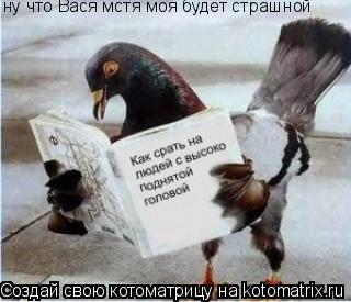 Котоматрица: ну что Вася мстя моя будет страшной