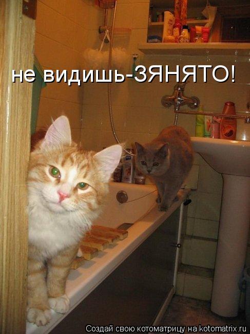 Котоматрица: не видишь-ЗЯНЯТО!