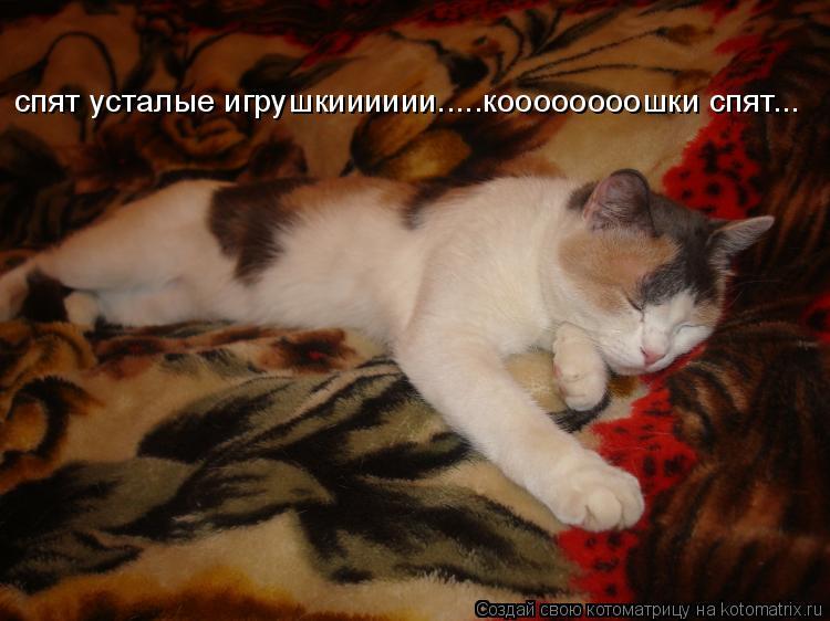 Котоматрица: спят усталые игрушкииииии.....коооооооошки спят...
