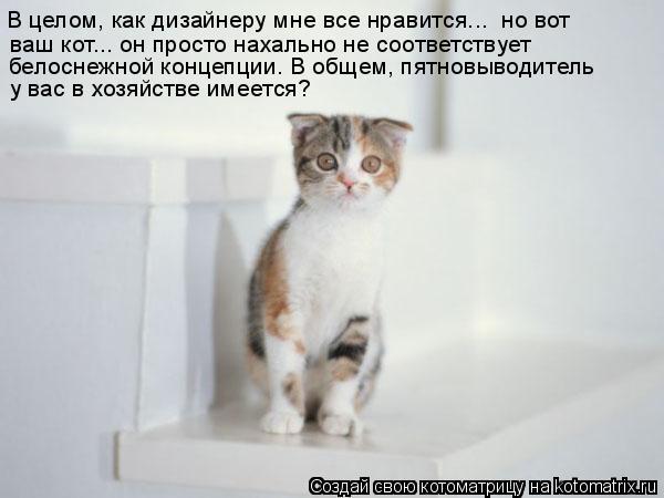 Котоматрица: В целом, как дизайнеру мне все нравится...  но вот  ваш кот... он просто нахально не соответствует  белоснежной концепции. В общем, пятновыводи