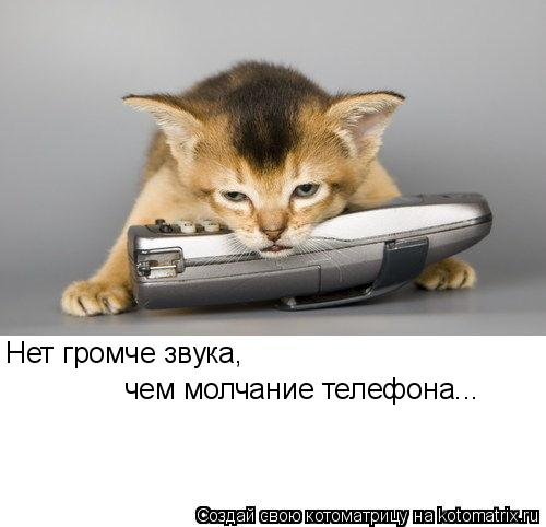 Котоматрица: Нет громче звука, чем молчание телефона...