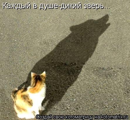 Котоматрица: Каждый в душе-дикий зверь...