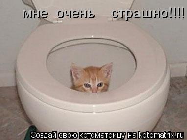 Котоматрица: мне  очень    страшно!!!!