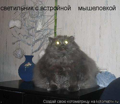 Котоматрица: светильник с встройной    мышеловкой ke