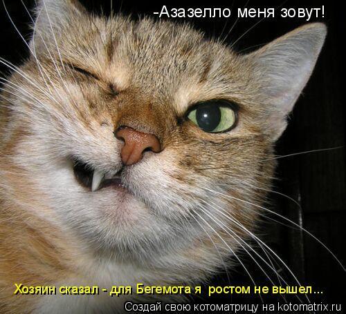Котоматрица: -Азазелло меня зовут!  Хозяин сказал - для Бегемота я  ростом не вышел...