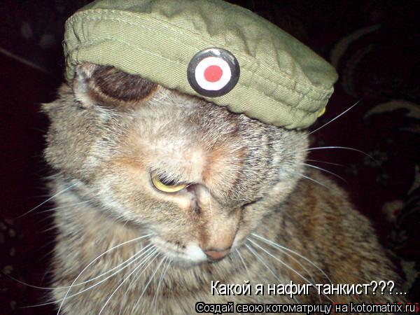 Котоматрица: Какой я нафиг танкист???...