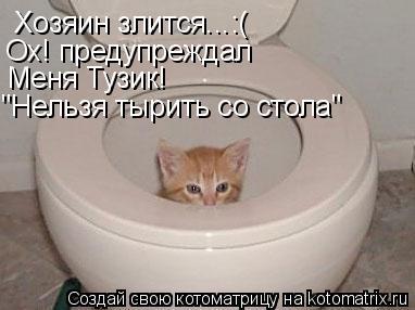 """Котоматрица: Хозяин злится...:( Ох! предупреждал Меня Тузик! """"Нельзя тырить со стола"""""""
