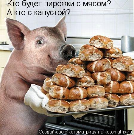 Котоматрица: Кто будет пирожки с мясом? А кто с капустой?