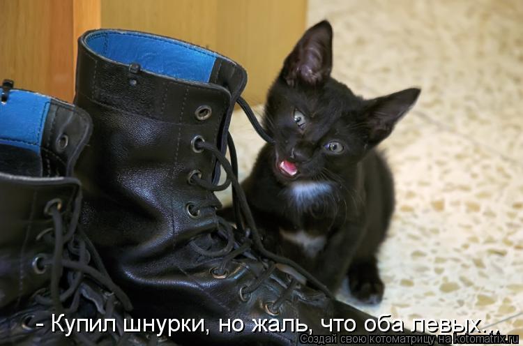 Котоматрица: - Купил шнурки, но жаль, что оба левых...