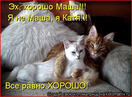 Котоматрица: Эх, хорошо Маша!!! Я не Маша, я Катя!!! Все равно ХОРОШО!