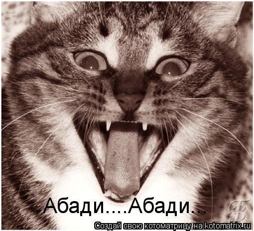 Котоматрица: Абади....Абади...