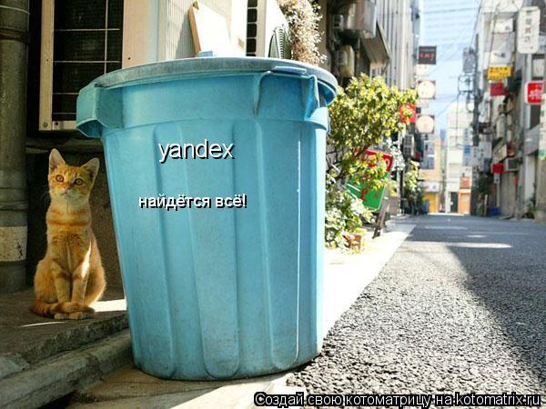 Котоматрица: yandex найдётся всё!