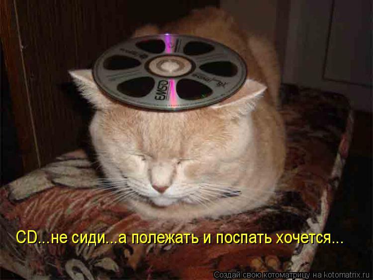 Котоматрица: CD...не сиди...а полежать и поспать хочется...