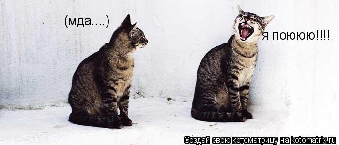 Котоматрица: (мда....) я поююю!!!!