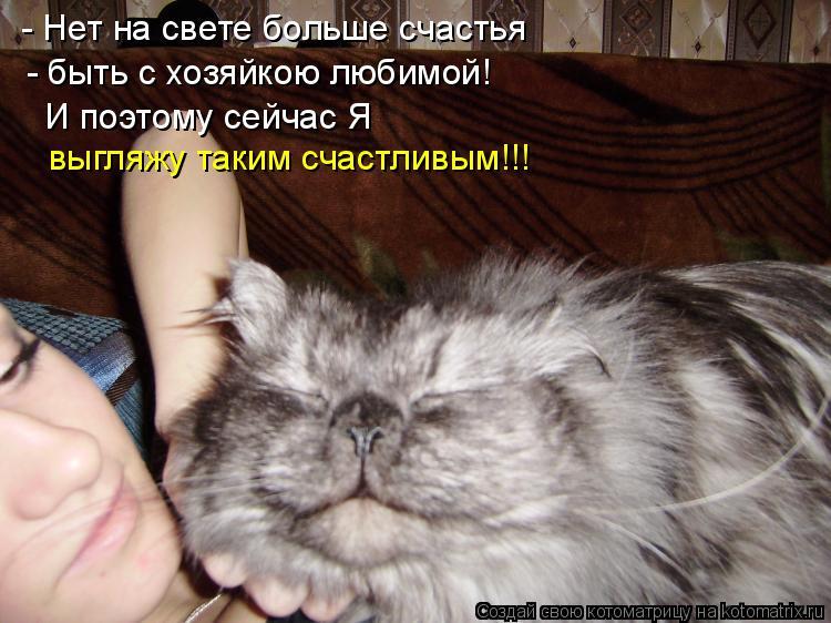 Котоматрица: - Нет на свете больше счастья - быть с хозяйкою любимой! И поэтому сейчас Я выгляжу таким счастливым!!!