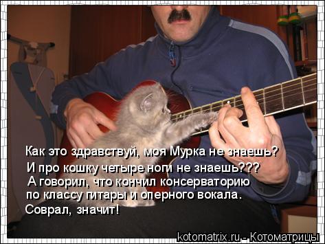 Котоматрица: Как это здравствуй, моя Мурка не знаешь? И про кошку четыре ноги не знаешь??? А говорил, что кончил консерваторию  по классу гитары и оперного