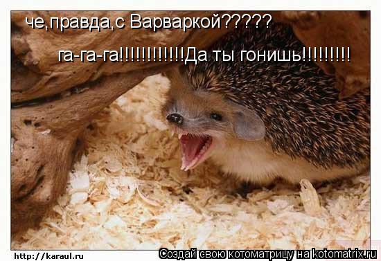 Котоматрица: га-га-га!!!!!!!!!!!!Да ты гонишь!!!!!!!!! га-га-га!!!!!!!!!!!!Да ты гонишь!!!!!!!!! правда,с Варваркой????? че,правда,с Варваркой????? че,правда,с Вар