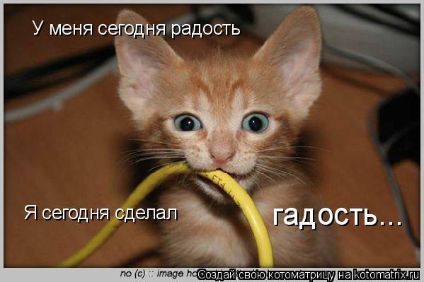 http://kotomatrix.ru/images/lolz/2008/11/11/4y.jpg