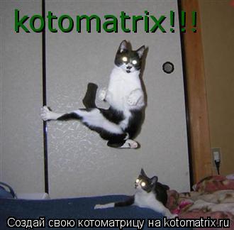 Котоматрица: kotomatrix!!!