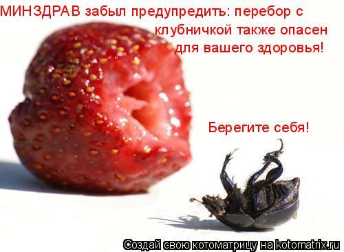 Котоматрица: МИНЗДРАВ забыл предупредить: перебор с клубничкой также опасен для вашего здоровья! Берегите себя!