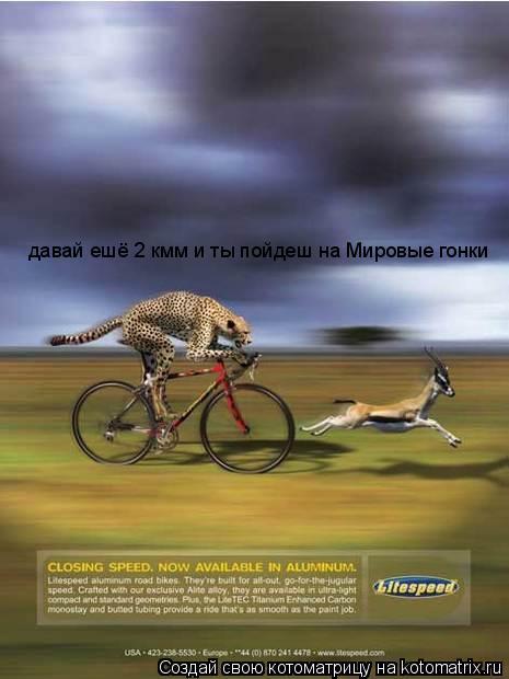 Котоматрица: давай ешё 2 кмм и ты пойдеш на Мировые гонки