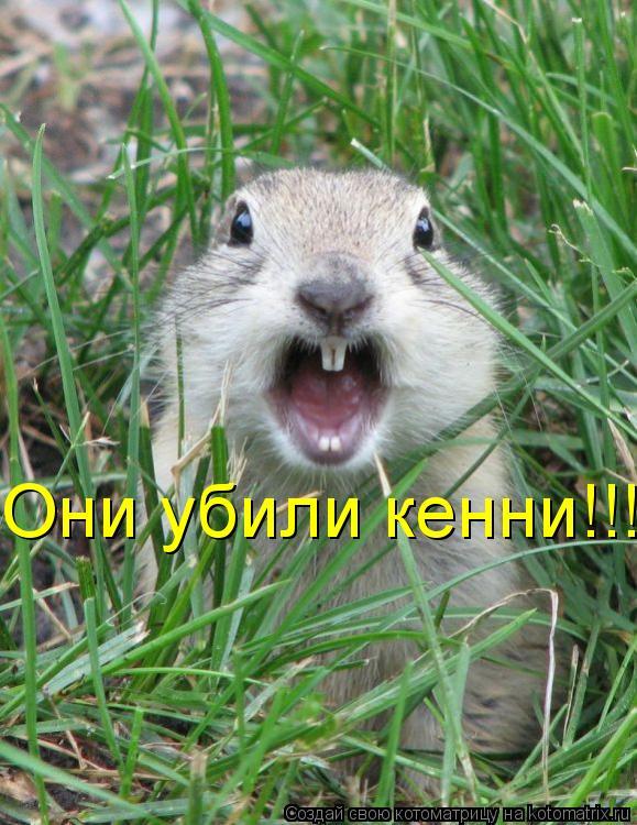 Котоматрица: Они убили кенни!!!