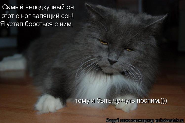 Котоматрица: Самый неподкупный он, этот с ног валящий,сон! Я устал бороться с ним, тому и быть,чу-чуть поспим.)))