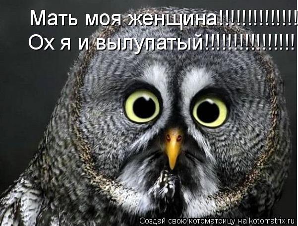 Котоматрица: Мать моя женщина!!!!!!!!!!!!!!! Мать моя женщина!!!!!!!!!!!!!!! Мать моя женщина!!!!!!!!!!!!!!! Ох я и вылупатый!!!!!!!!!!!!!!!! Ох я и вылупатый!!!!!