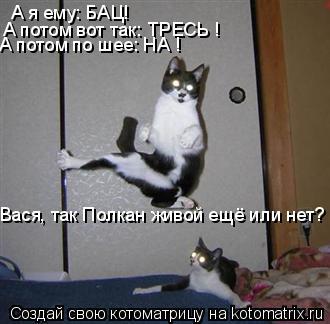 Котоматрица: А я ему: БАЦ! А потом вот так: ТРЕСЬ ! А потом по шее: НА ! Вася, так Полкан живой ещё или нет?