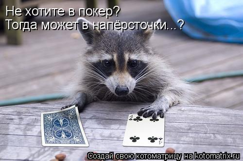Котоматрица: Не хотите в покер? Тогда может в напёрсточки...?