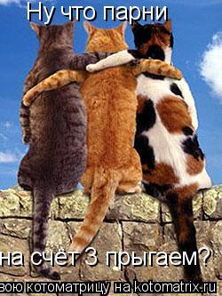 Котоматрица: Ну что парни на счёт 3 прыгаем?
