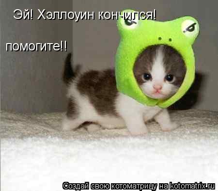 Котоматрица: Эй! Хэллоуин кончился!  помогите!!