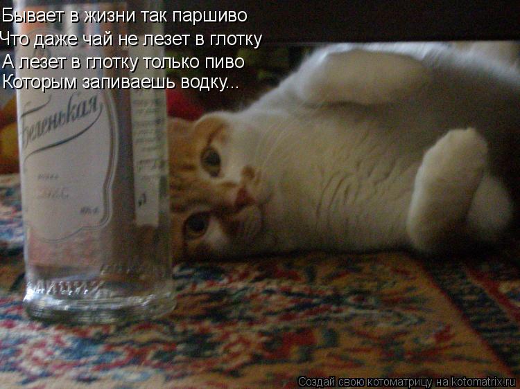 Котоматрица: Бывает в жизни так паршиво Что даже чай не лезет в глотку А лезет в глотку только пиво Которым запиваешь водку...
