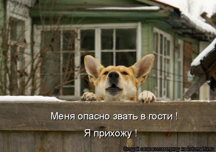 Котоматрица: Меня опасно звать в гости ! Я прихожу !