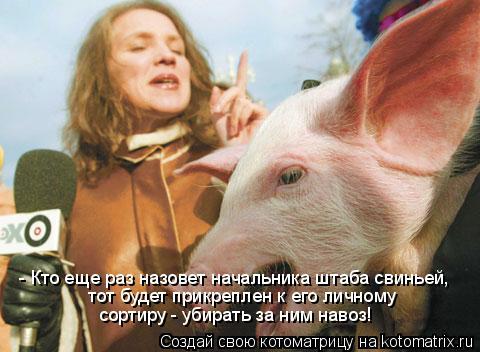Котоматрица: - Кто еще раз назовет начальника штаба свиньей,  тот будет прикреплен к его личному  сортиру - убирать за ним навоз!