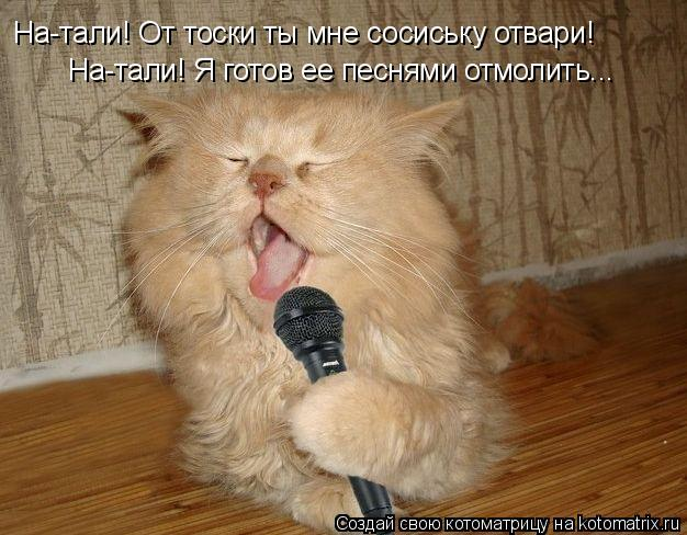 Котоматрица: На-тали! От тоски ты мне сосиську отвари! На-тали! Я готов ее песнями отмолить...
