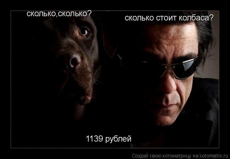 Котоматрица: сколько стоит колбаса? 1139 рублей сколько,сколько?
