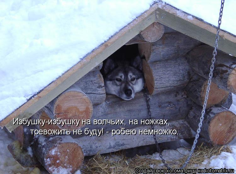 Котоматрица: Избушку-избушку на волчьих, на ножках, тревожить не буду! - робею немножко..