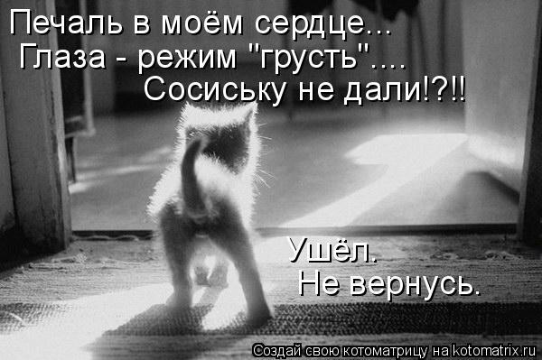 """Котоматрица: Печаль в моём сердце... Глаза - режим """"грусть""""....  Сосиську не дали!?!! Ушёл. Не вернусь."""