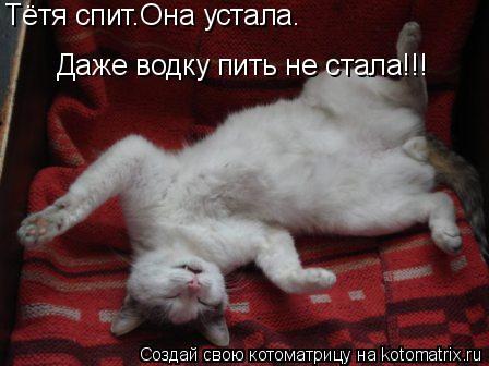 Котоматрица: Тётя спит.Она устала. Даже водку пить не стала!!!