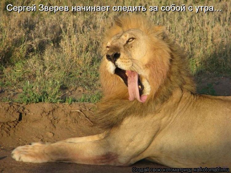 Котоматрица: Сергей Зверев начинает следить за собой с утра...
