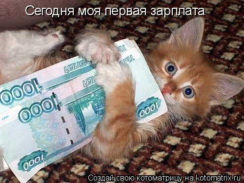 Котоматрица: Сегодня моя первая зарплата