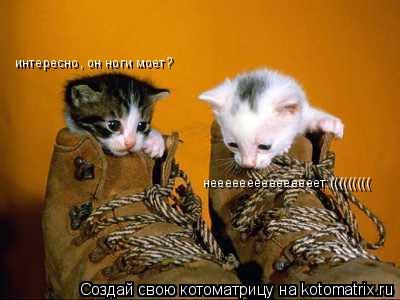 Котоматрица: интересно, он ноги моет? нееееееееееееееет:(((((((((