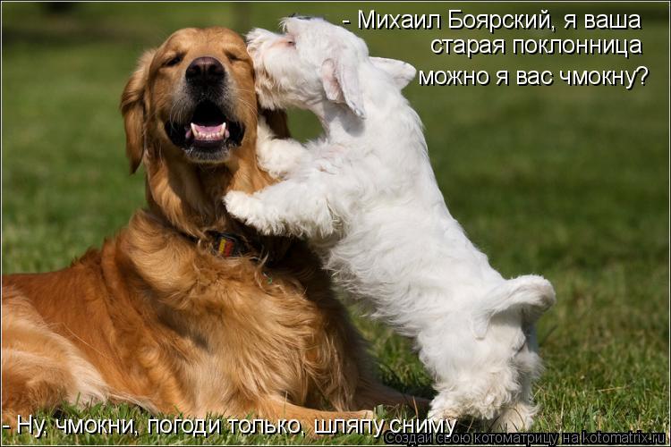 Котоматрица: - Михаил Боярский, я ваша  старая поклонница можно я вас чмокну? - Ну, чмокни, погоди только, шляпу сниму
