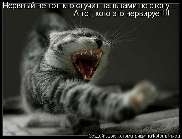 Котоматрица: Нервный не тот, кто стучит пальцами по столу... А тот, кого это нервирует!!!
