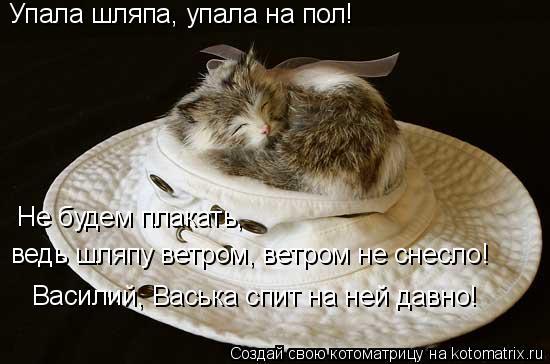 Котоматрица: Упала шляпа, упала на пол! Не будем плакать,  ведь шляпу ветром, ветром не снесло! Василий, Васька спит на ней давно!