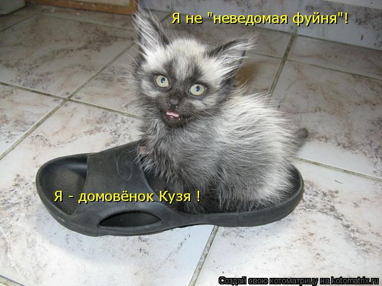 """Котоматрица: Я - домовёнок Кузя ! Я не """"неведомая фуйня""""!"""