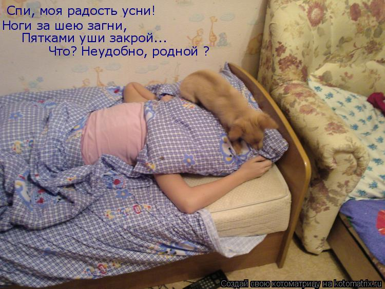 Котоматрица: Спи, моя радость усни! Ноги за шею загни, Пятками уши закрой... Что? Неудобно, родной ?