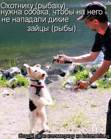 Котоматрица: Охотнику (рыбаку)  нужна собака, чтобы на него  не нападали дикие  зайцы (рыбы)...